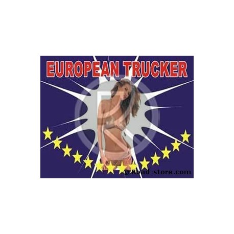 DRAPEAU FOND DE CABINE PIN UP