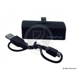 BATTERIE für SMARTPHONES MICRO USB 800mA