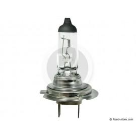 Glühbirne H7 12V 55W